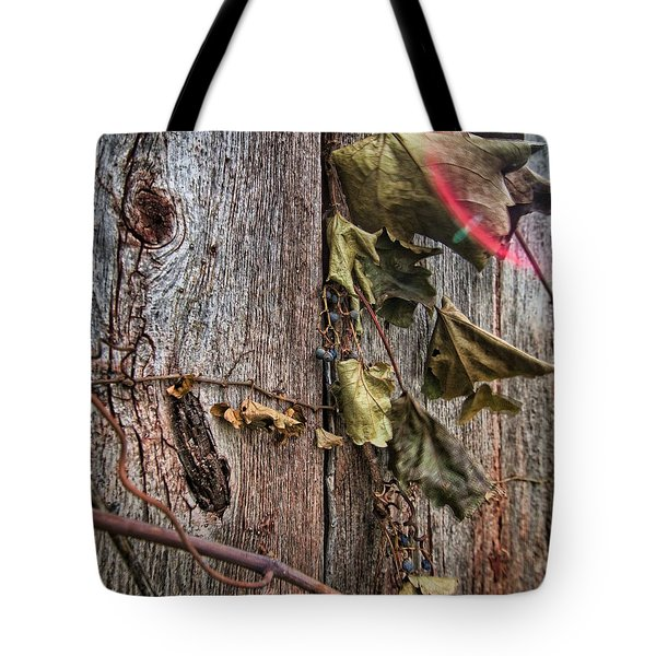 Vines And Barns Tote Bag by Daniel Sheldon