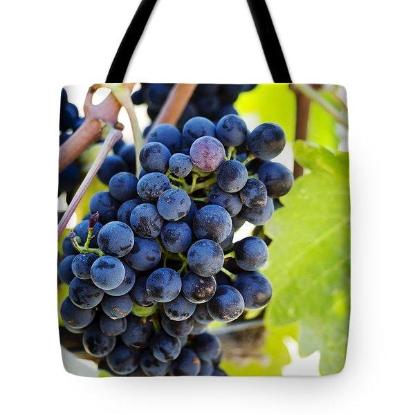 Vineyard Grapes Tote Bag by Charmian Vistaunet