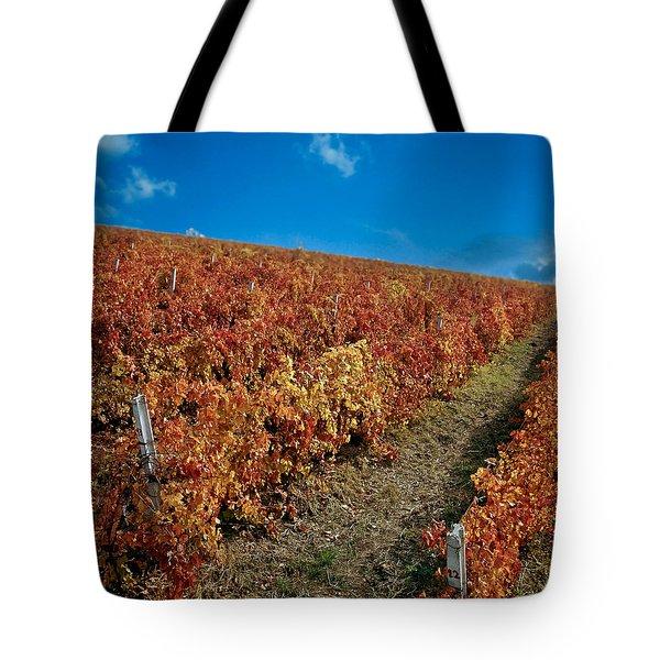 Vineyard In Negotin. Serbia Tote Bag by Juan Carlos Ferro Duque