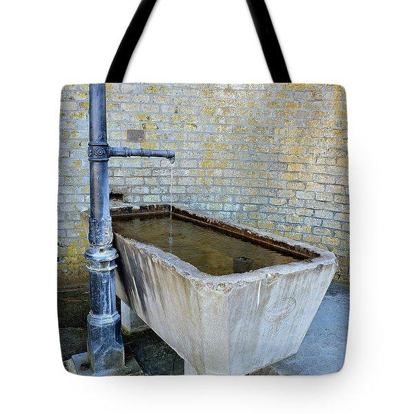 Vintage Fountain Tote Bag by Felicia Tica