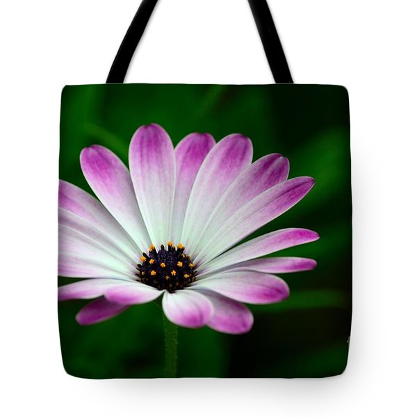 Violet And White Flower Petals With Yellow Stamens Blossoms  Tote Bag