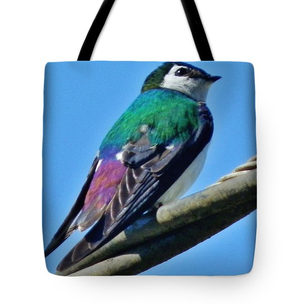 Tote Bag featuring the photograph Violet-green Swallow by VLee Watson