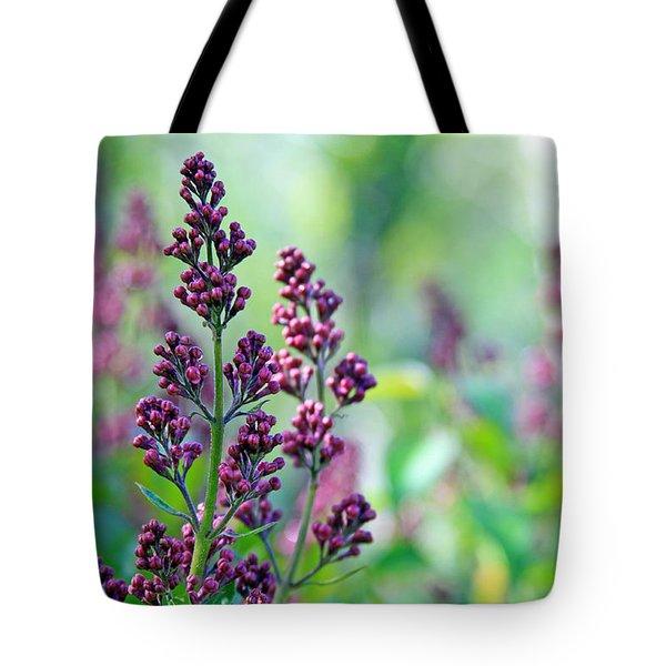 Violet Lilacs Budding Tote Bag by Karon Melillo DeVega