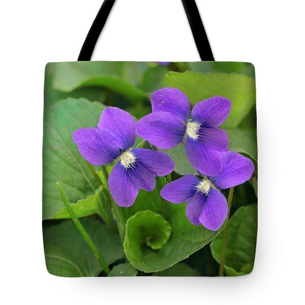 Violet Trio Tote Bag