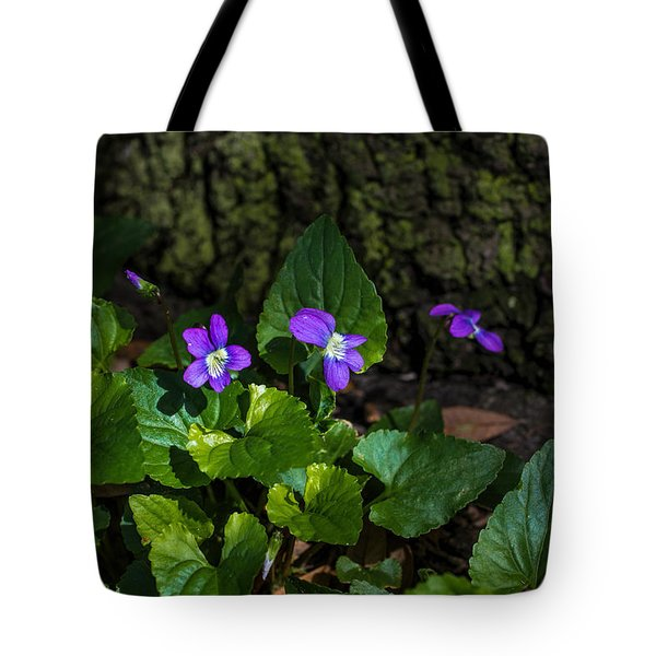 Violets Tote Bag by Dorothy Cunningham