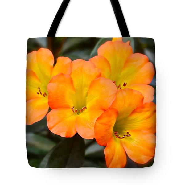 Vireya Rhododendron Tote Bag by Venetia Featherstone-Witty