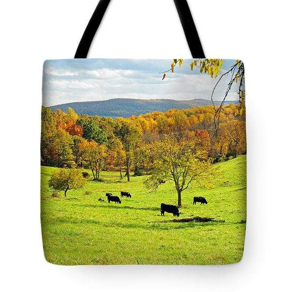Tote Bag featuring the photograph Virginia Autumn by Olivia Hardwicke