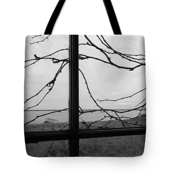 Tote Bag featuring the photograph Virginia Creeper  by Cheryl Hoyle