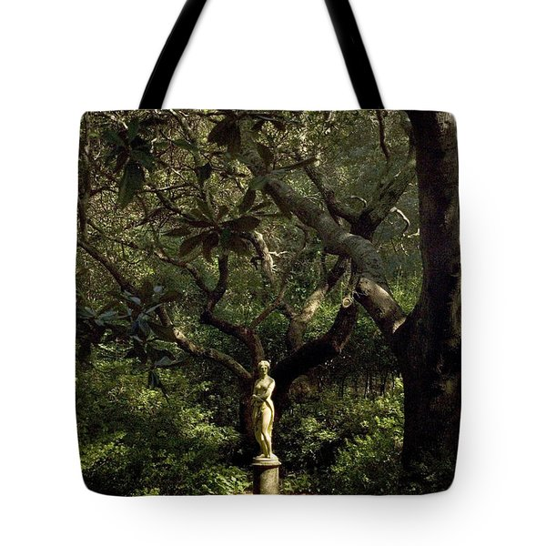 Tote Bag featuring the photograph Virginia Dare Statue by Greg Reed