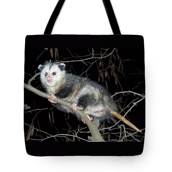 Virginia Opossum Tote Bag