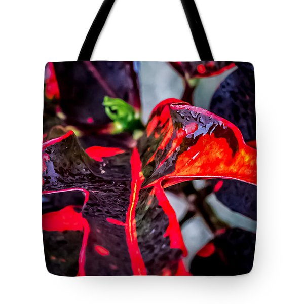 Visions Of Red Tote Bag