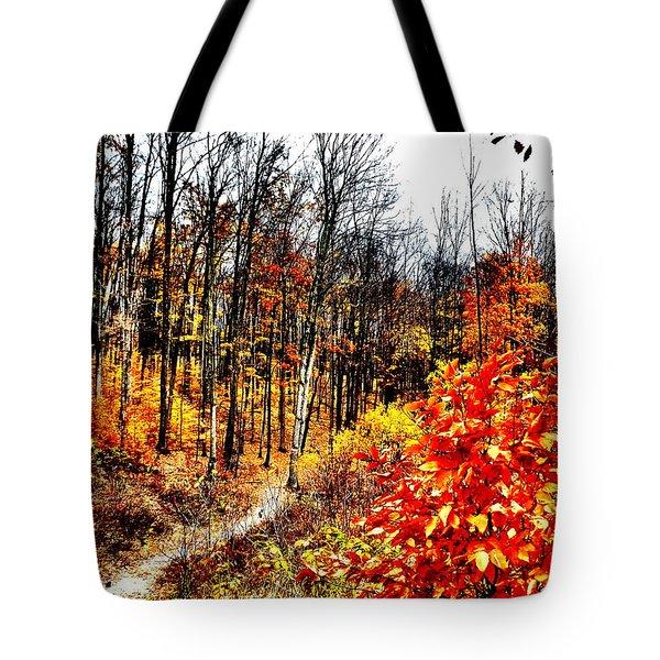 Vivid Pathway Tote Bag