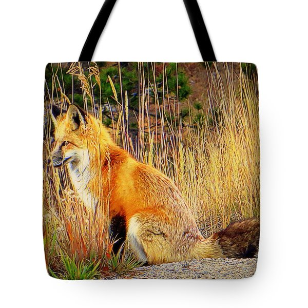 Vixen Tote Bag by Karen Shackles