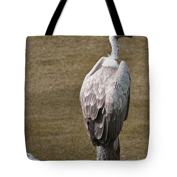 Vulture On Guard Tote Bag