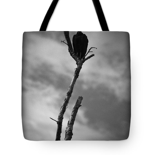Vulture Silhouette Tote Bag by Bradley R Youngberg