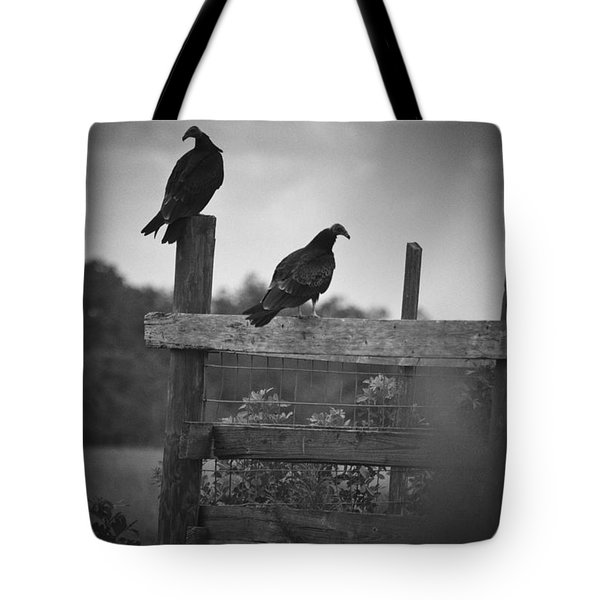 Vultures On Fence Tote Bag by Bradley R Youngberg