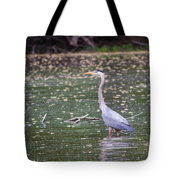 Tote Bag featuring the photograph Wading Crane by Susan  McMenamin