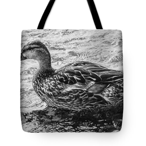 Wading Female Mallard Tote Bag