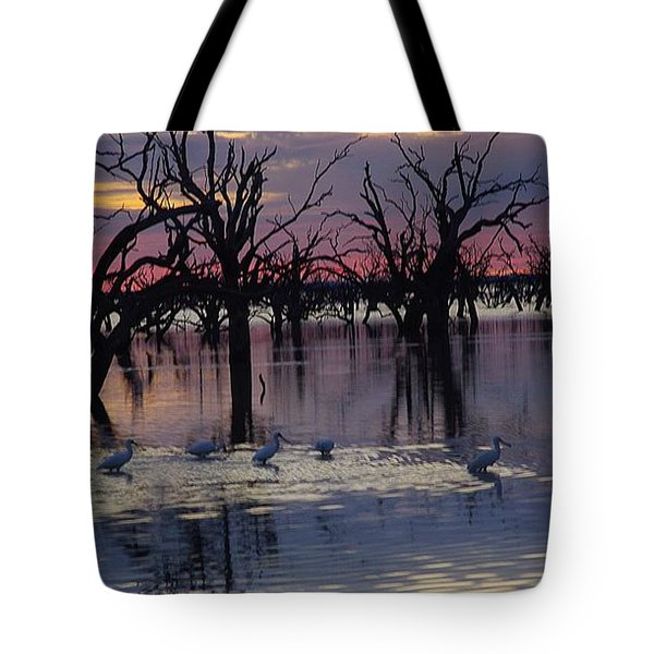Wading The Shallows Tote Bag