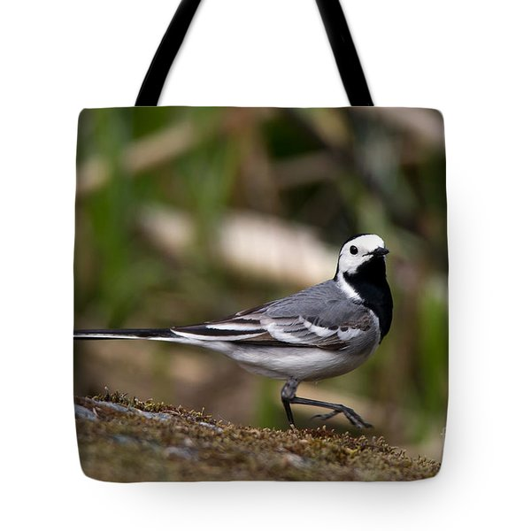 Wagtail's Step Tote Bag