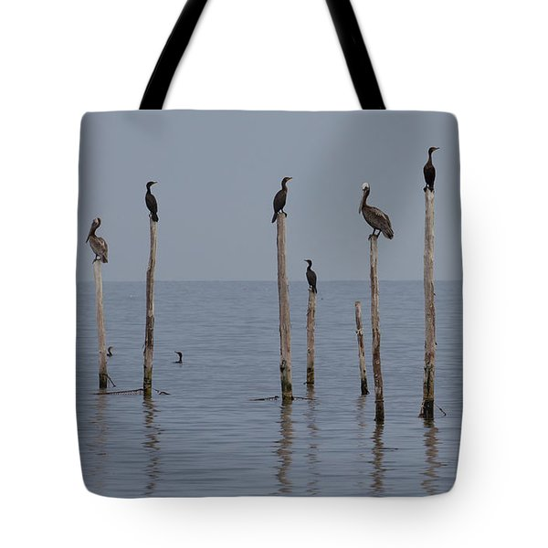 Waiting 1 Tote Bag