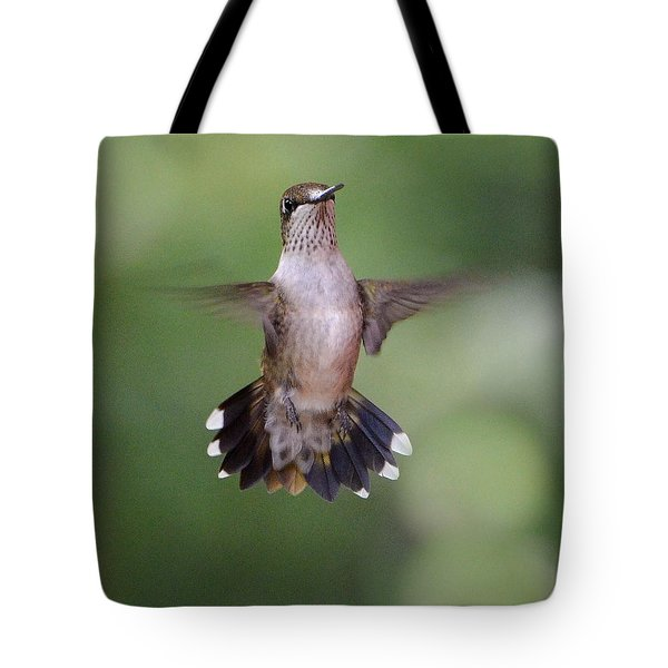 Waiting For A Turn Tote Bag by Amy Porter
