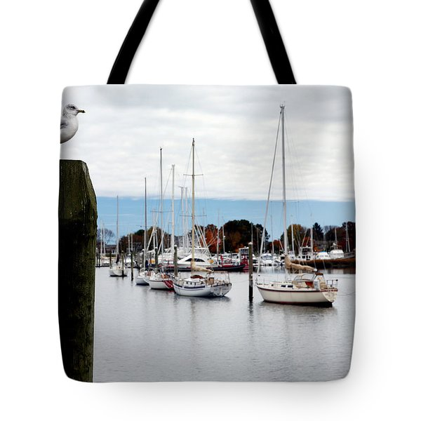 Waiting For Sandy Tote Bag