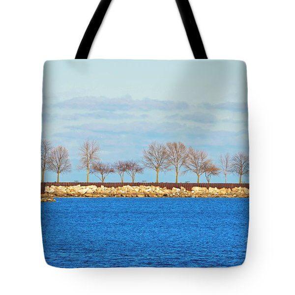 Waiting For Summer - Trees At The Edge Tote Bag by Mary Machare