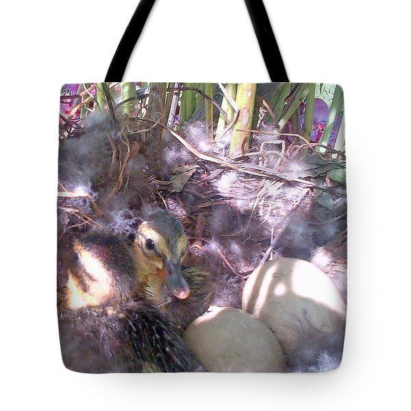 Waiting For The Others Tote Bag by Barbara McDevitt