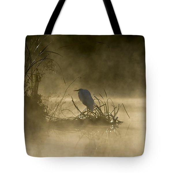 Tote Bag featuring the photograph Waiting For The Sun by Steven Sparks