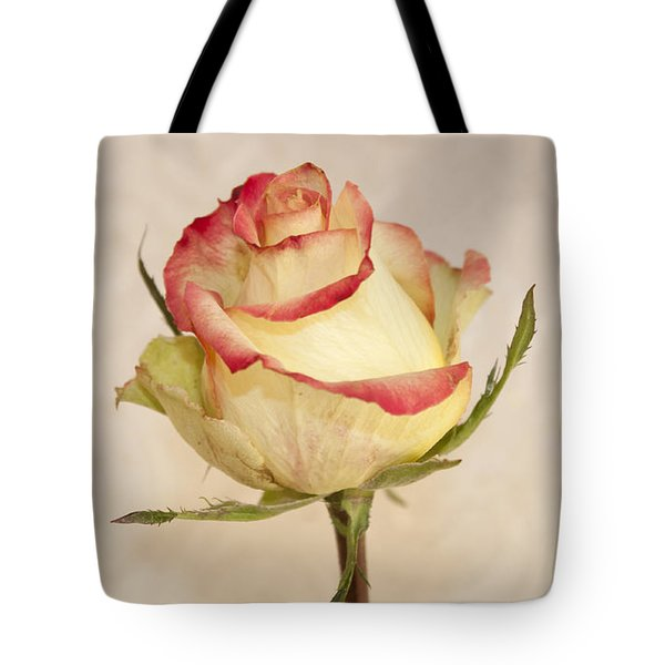 Tote Bag featuring the photograph Waiting For The Unfurling by Sandra Foster