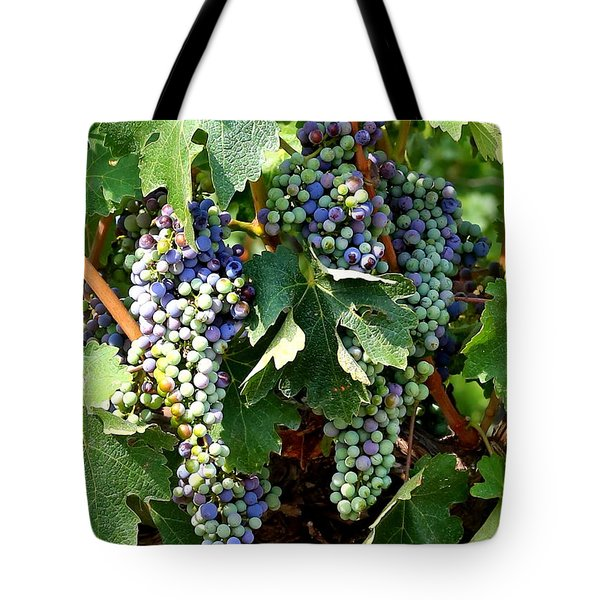 Waiting For Wine Tote Bag by Carol Groenen