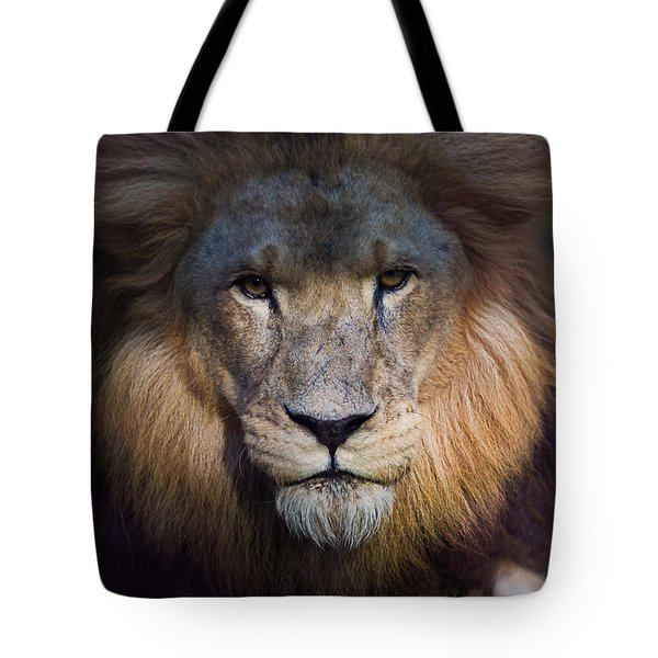 Waiting In The Shadows Tote Bag by Tim Stanley