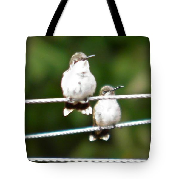 Tote Bag featuring the photograph Waiting Our Turn by Nick Kirby