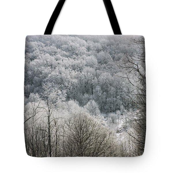 Waiting Out Winter Tote Bag by John Haldane