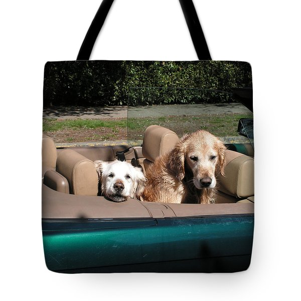 Tote Bag featuring the photograph Waiting Patiently by Cheryl Hoyle