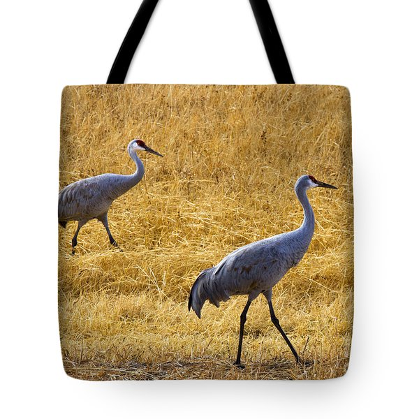 Walk This Way Tote Bag