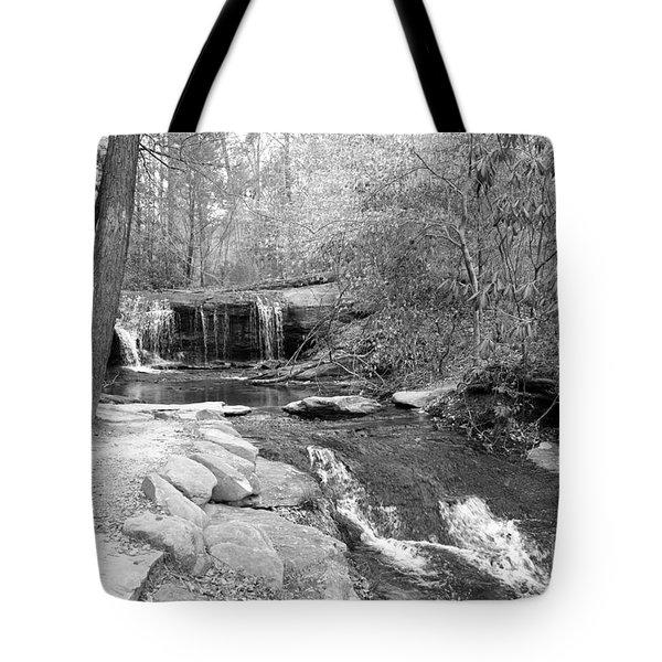 Walk To The Waterfall Tote Bag by Carol Groenen