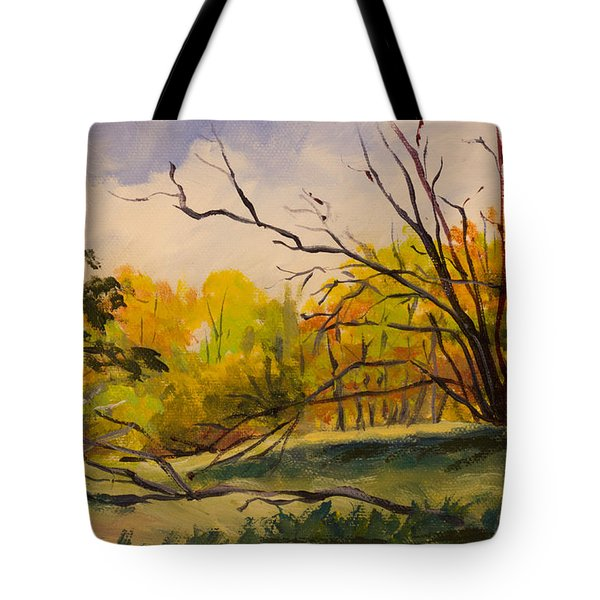 Walking In Montgomery Bell Park. Tote Bag by Janet Felts