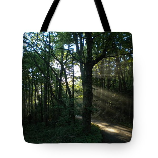 Tote Bag featuring the photograph Walking In The Light by Diannah Lynch