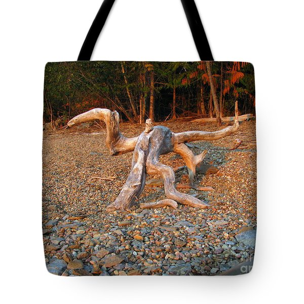Walking On The Beach Tote Bag