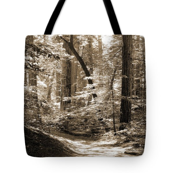 Walking Through The Redwoods Tote Bag by Mike McGlothlen