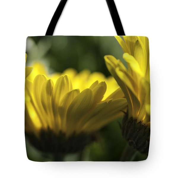 Wall Flowers Tote Bag by Fran Riley