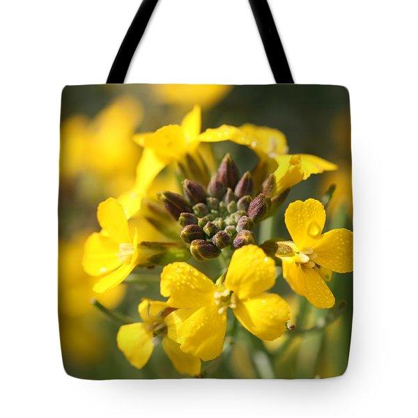 Wallflowers Tote Bag by Mark Severn