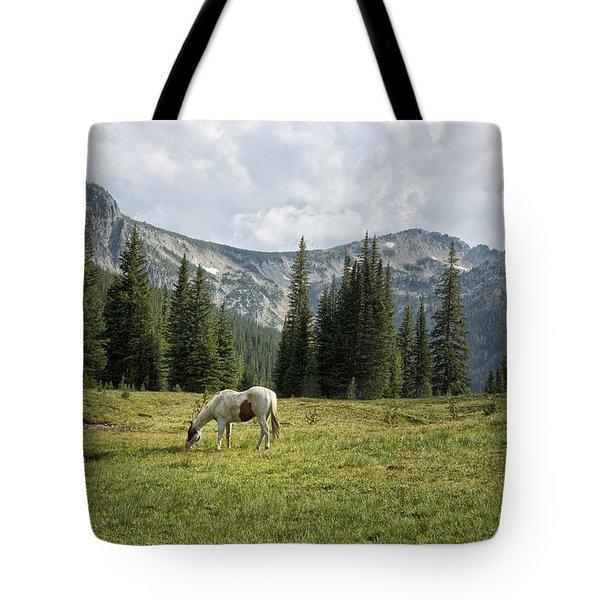 Wallowas - No. 2 Tote Bag