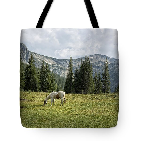 Wallowas - No. 2 Tote Bag