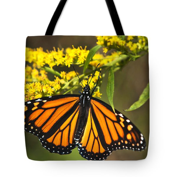 Wandering Migrant Butterfly Tote Bag by Christina Rollo