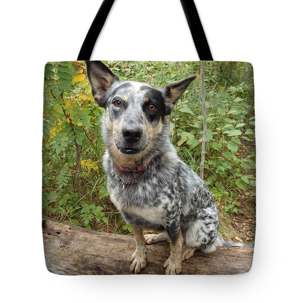 Tote Bag featuring the photograph Wanna Play by James Peterson
