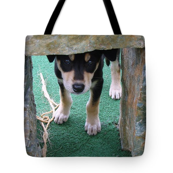 Wannabe Sled Dog In The Yukon Tote Bag by Richard Rosenshein