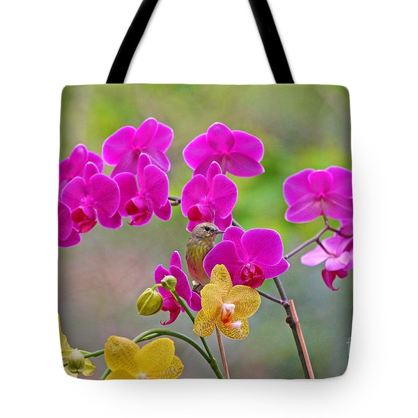 Warbler Posing In Orchids Tote Bag